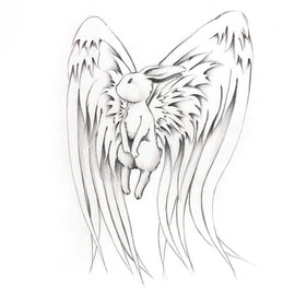 Lapin ange