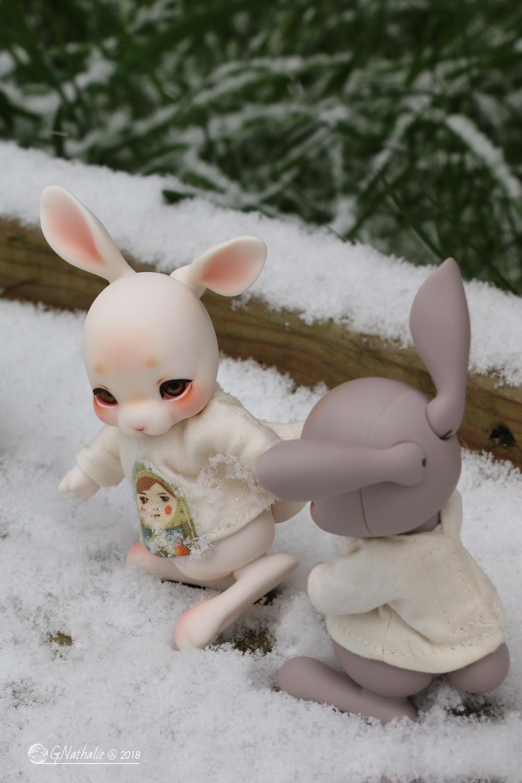 28 février 2018, il a neigé!