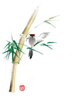 Take - bambou