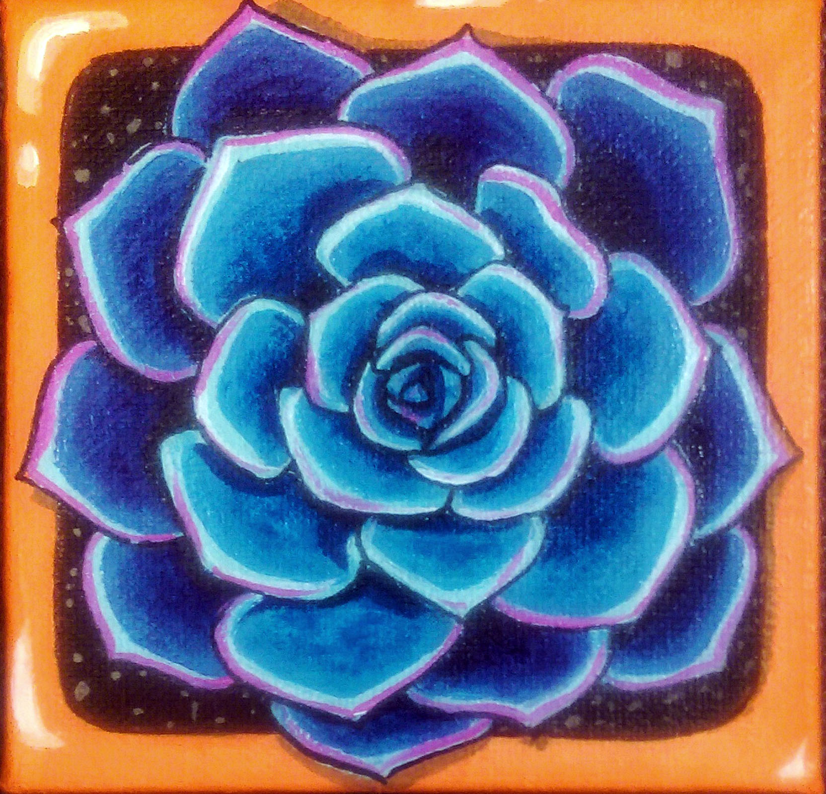 Succulent #4