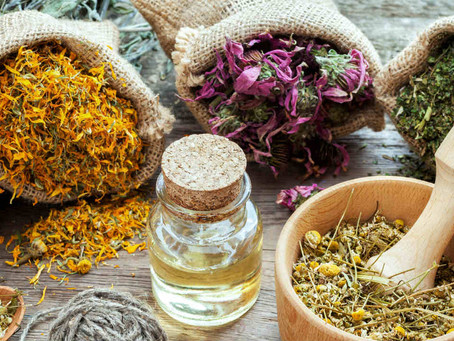 Adaptogens: What Are They and Why You Need Them Now