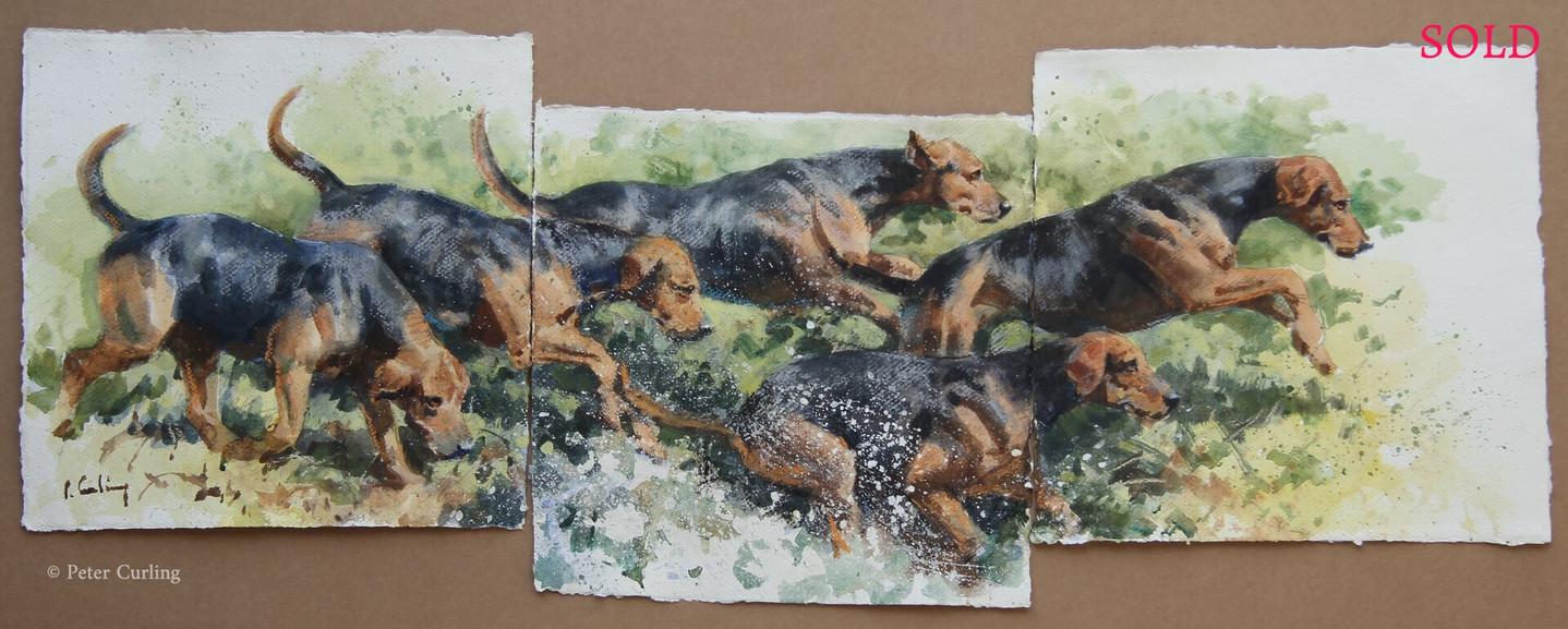 Scarteen Hounds, Triptych