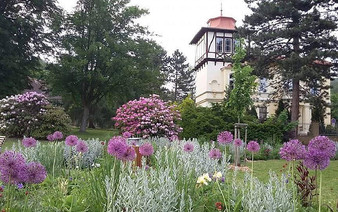 The surrounding park