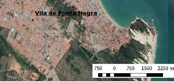 v5a8| A solidariedade em movimento: o combate ao COVID 19 na Vila de Ponta Negra, Natal (RN)