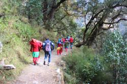 Way To Atri Gupha