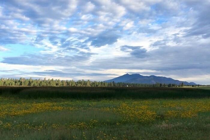 Flagstaff Campsite by Christalle Bodiford landscape