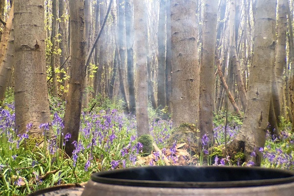 Smoke from campfire in bluebell wood by Francesca Turauskis (1) (1)