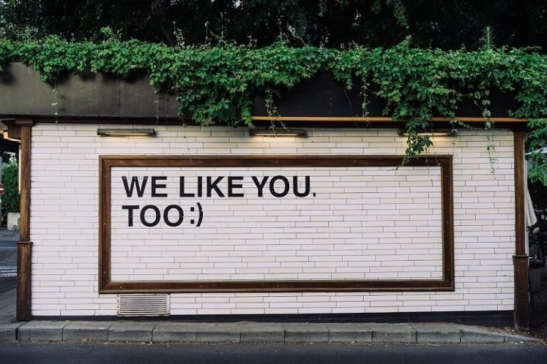 Green ivy above a white brick wall that has the words 'we like you too ;)' written on it - by adam-jang on unsplash