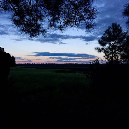 Flagstaff field by Christalle Bodiford