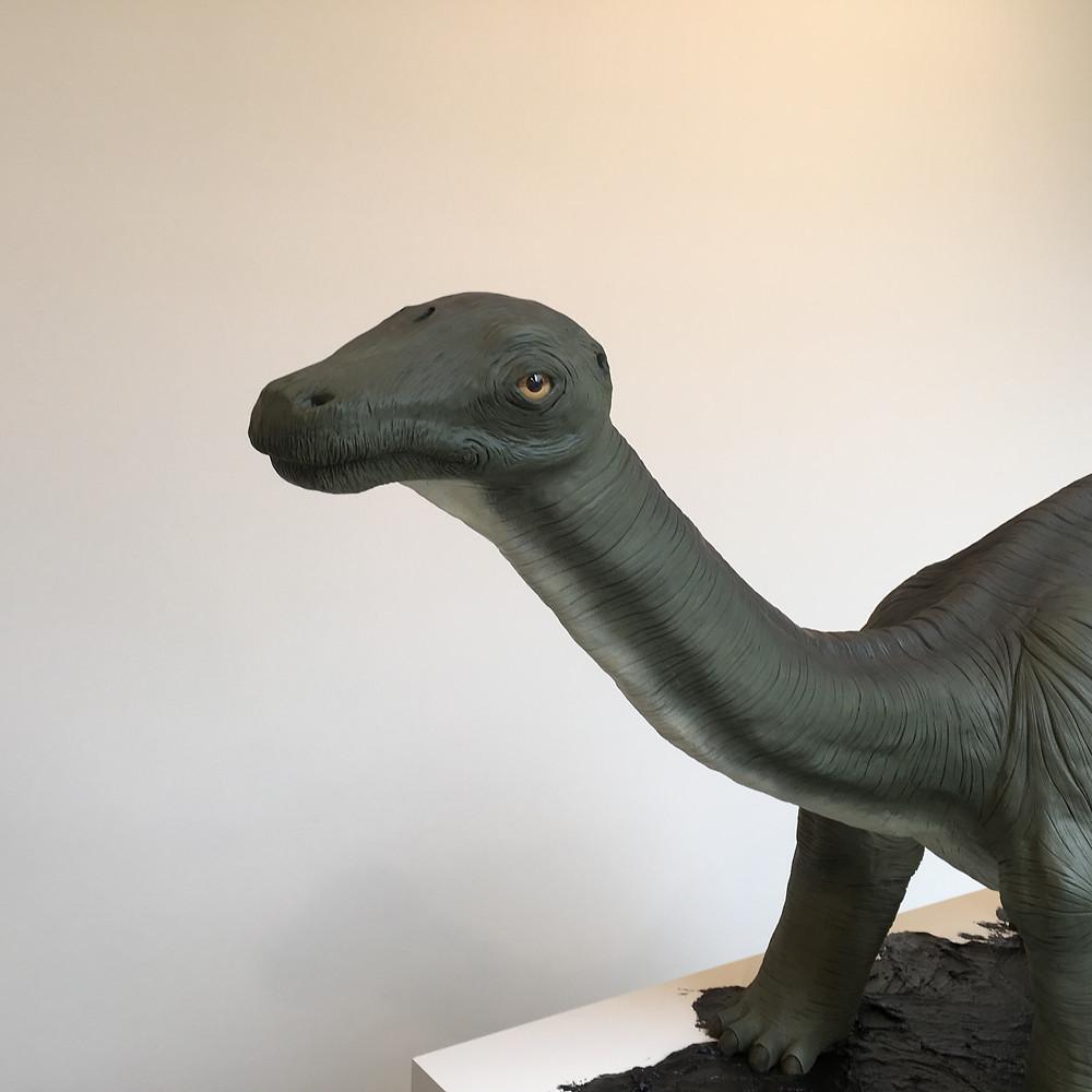 Brontosaurs detail.