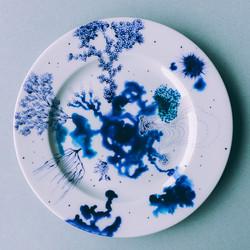 """Assiette """"Bleu de Delft""""  4"""