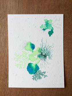 Carte 3