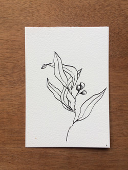 Branche2