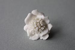 Fleurs_porcelaine