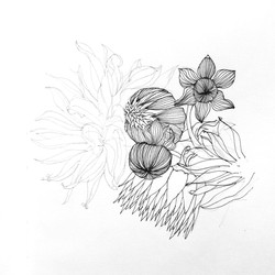 Dessin_fleurs