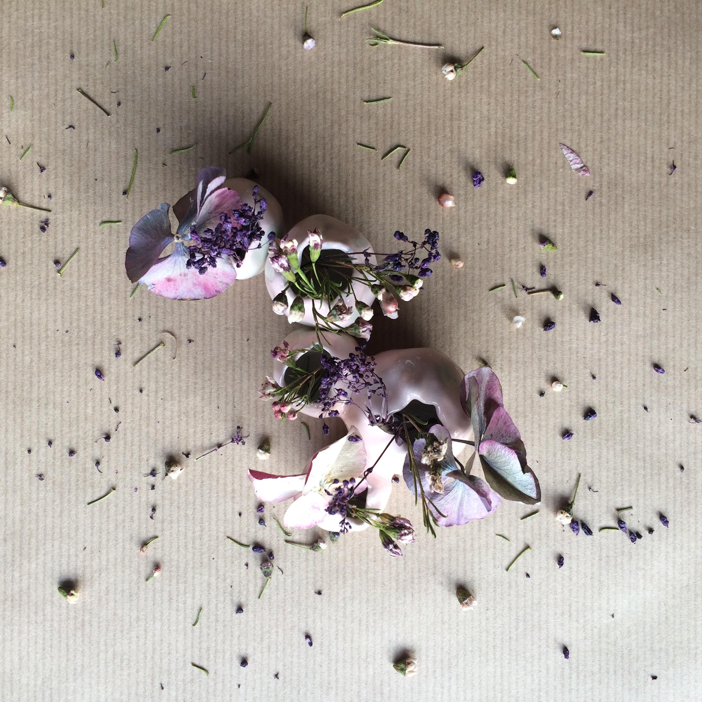Le vase de Violette