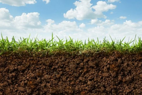 Premium Lawn Soil - One Yard