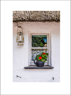 Cottage Window $20
