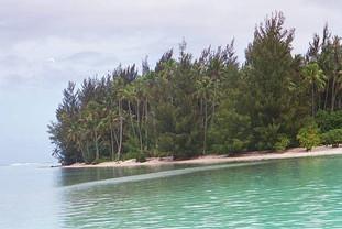 Motu (small island) where we snorkeled and swam with stingrays