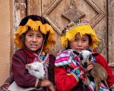 Andean Girls and their Lambs