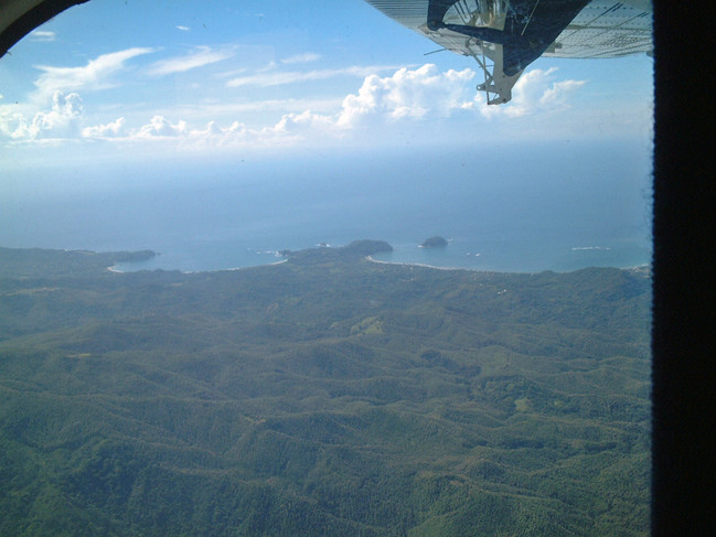 Pacific coast and endless rainforests