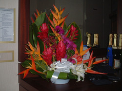 Flowers we bought in town