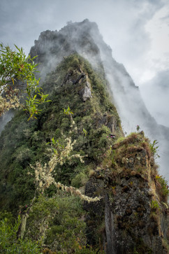 Huayna PIcchu Peak