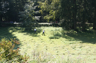 Grass is being cut with hand tools