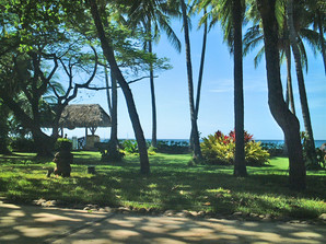 Grounds at Hotel El Diria - Tamarindo
