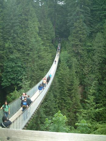Capillano Suspension Bridge, Vancouver