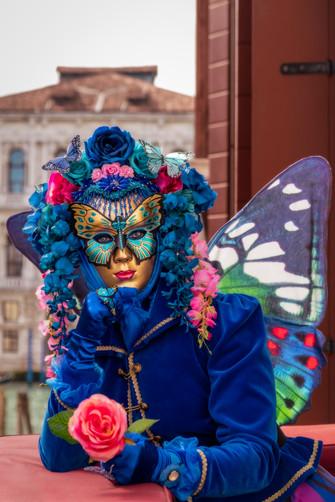Butterfly on Balcony I