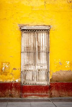 Birdcage Window III