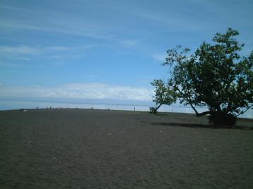 Point Venus black beach