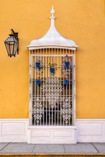 Birdcage Window I