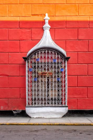 Birdcage Window IV