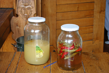 Romanian hot peppers