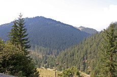 Countryside of Moldavia