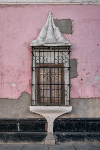 Birdcage Window VI