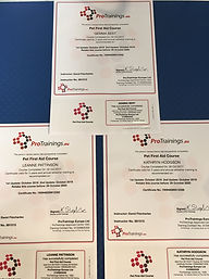 Pet First Aid Certificates