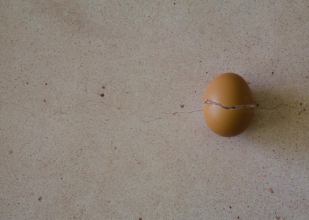 egg concept