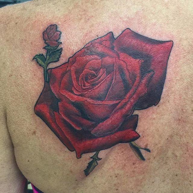 First session on this beauty _shawn_elliott_isa #rosetattoo #redrose #ikonicforareason #ikonicinkrep