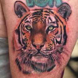 Resident Ikonic Artist, Shawn Elliott _shawn_elliott_bltc, made this kitty cat!  #tattoo #tiger #tig