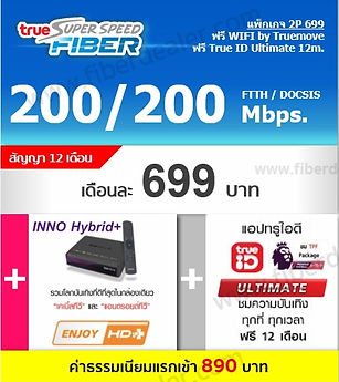 True INNO Hybrid fiber (2).jpg