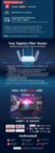 TOL-InnoHybrid-Info-page-TH2.jpg