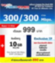 999300300.jpg