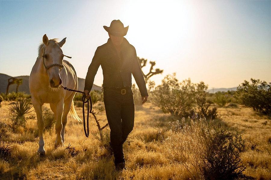 springsteen-western-stars-film-1-large_edited.jpg