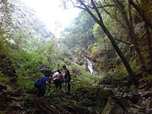 Trek to Waterfall from Camping site