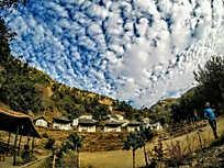 The Campsite Nainital (Pangot)