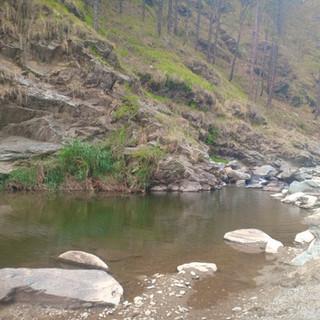 Pond near bhimtal camp.jpg