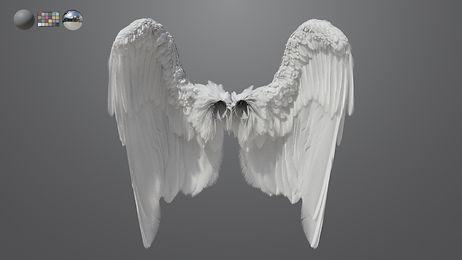 wing_01.jpg